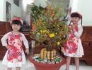 Hậu Giang tặng bằng khen cho gia đình sinh 2 con gái