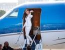 Tân hoa hậu Hoàn vũ được đại gia Philippines đón về nước bằng phi cơ riêng