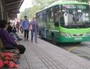 TPHCM: Hành khách sử dụng phương tiện công cộng giảm hàng chục triệu lượt