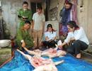 Thu mua lợn bệnh, ốm giá rẻ về giết mổ để bán kiếm lời