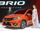 Honda Brio sẽ về Việt Nam với giá từ 330 triệu đồng?