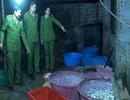 Phát hiện cơ sở chuyên chế biến lòng lợn không đảm bảo vệ sinh