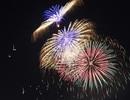 Các tỉnh thành được tổ chức bắn pháo hoa mừng Tết Kỷ Hợi