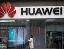 """Hai nhân viên Huawei biến mất """"bí ẩn"""" sau khi phanh phui chuyện nội bộ"""