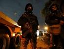 Ai Cập tiêu diệt 40 nghi phạm khủng bố sau vụ đánh bom xe du khách Việt