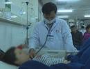 Vụ hơn 200 người nhập viện sau ăn bánh mì: Do nhân bánh nhiễm khuẩn Salmonella