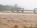 Nước lũ dâng cao ở Bình Định, hàng trăm hộ dân phải sơ tán