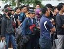 Hàng nghìn CĐV Malaysia xếp hàng qua đêm mua vé xem trận chung kết