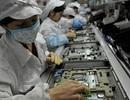 Doanh nghiệp điện tử: Phát hiện gần 1.800 vi phạm trong lĩnh vực lao động