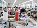 Dệt may Việt vẫn phải nhập hơn 40% nguyên liệu từ Trung Quốc