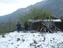 Hàng nghìn học sinh miền núi nghỉ học vì rét hại
