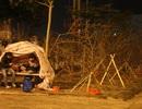"""Chuyện những người dựng lều bên đường """"chờ"""" Tết"""
