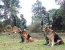 """Những """"chiến binh đặc biệt"""" của lực lượng biên phòng"""