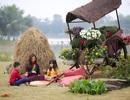 Tinh hoa Tết Việt 3 miền hội tụ tại Ecopark