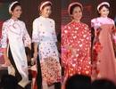 Dàn sao Sống chung với mẹ chồng, Người phán xử, Hoa hậu H'Hen Niê rủ nhau… catwalk