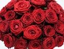 Đại gia mua tặng người yêu bó hồng giá gần 160 triệu đồng dịp Valentine