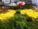 29 Tết, hoa ngập phố nhưng vẫn chưa treo biển giảm giá