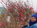 Rộn ràng không khí đón năm mới khắp nẻo đường châu Á