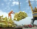 Kinh tế Việt Nam ở đâu và về đâu khi thế giới bước vào thời đại số 4.0?
