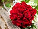 Chỉ cần có anh bên cạnh,  ngày nào cũng là ngày tình yêu