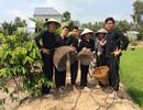 Những ngày nghỉ tết, du khách đến Vườn quốc gia Tràm Chim tăng 5 lần