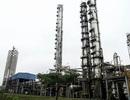 """Lao đao vì công nợ, đạm Ninh Bình muốn vay thêm 500 tỷ đồng """"cứu"""" nhà máy"""
