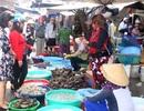 Sau Tết, giá hải sản ở mức cao, sức tiêu thụ vẫn lớn