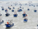 Từ châu Phi tới Nam Mỹ, Trung Quốc đánh bắt nhiều và xa nhất thế giới