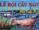 Độc đáo Lễ hội Cầu ngư - Rước cá Sủ vàng tại Hải Phòng