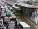 Hà Nội: Bất ngờ đề xuất cho xe chạy chung đường buýt nhanh