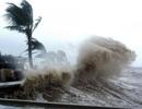 Lý giải việc bão ngày càng mạnh hơn: Do đại dương nóng lên