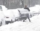 """Châu Âu tê liệt trong bão tuyết """"Quái vật"""", ít nhất 24 người chết"""