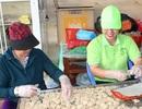 Làng bánh khô mè hối hả vào mùa Tết