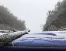 Sa Pa lạnh dưới 0 độ C, băng tuyết lại phủ trắng đèo Ô Quý Hồ