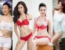 Soi nhan sắc gợi cảm dàn mỹ nhân Hoa hậu Việt Nam mới lên sóng VTV