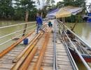 Hoàn thiện cầu gỗ bị lũ cuốn cho học sinh Nha Trang đi học