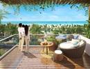Công bố chính thức khu nhà phổ biến nghỉ dưỡng Ocean View - Queen Pearl Mũi Né