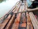 Cảnh sát đường thủy nổ súng bắt gỗ lậu trên sông