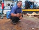 Vụ tàu vỏ thép 67 hư hỏng: Công ty Đại Nguyên Dương chỉ hỗ trợ bèo bọt?