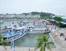 Chìm tàu du lịch tại cảng khách quốc tế Tuần Châu