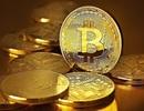 Một nhà đầu tư Việt mất 8 tỉ đồng vì 'sập bẫy' tiền ảo