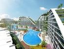 Mở bán chính thức 36 căn condotel đẹp nhất dự án The Coastal Hill