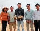 Ngư dân tự nguyện giao nộp rùa để thả về môi trường biển