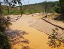 """Cá chết ở sông Bồng Miêu: Doanh nghiệp và người dân cùng """"đầu độc""""?"""