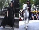 NTK Minh Hạnh đưa ngựa trắng lên sàn diễn Tuần lễ thời trang Việt Nam - Italia