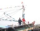 """Gặp lại ngư dân trúng mẻ cá """"lịch sử"""" hơn 150 tấn"""