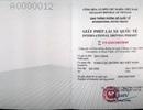 """Vụ CSGT """"chê"""" bằng lái quốc tế: Việt Nam chấp nhận loại giấy phép lái xe nào?"""