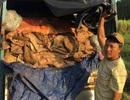Bắt xe tải chở hơn 3 tấn da bò thối đi tiêu thụ