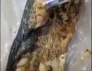 Xôn xao clip giun xuất hiện trong cá nục hấp tại bữa ăn trường nội trú