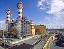 IPO thành công, PV Power sẽ đăng ký giao dịch cổ phiếu vào ngày mai (6/3)